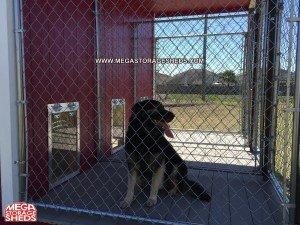 Dog Kennel5 | Mega Storage Sheds